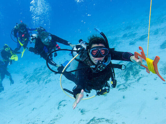 Dive Trips and Snorkeling